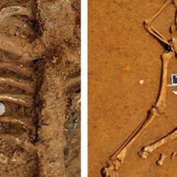 Successful identification of only full skeleton retrieved from Battle of Waterloo in 200 years